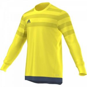 Bluza bramkarska adidas ENTRY 15 GK Junior AP0324